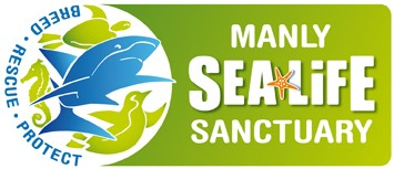 Manly SEA LIFE Sanctuary - Accommodation Yamba
