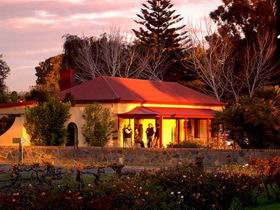 Elderton Wines - Accommodation Yamba