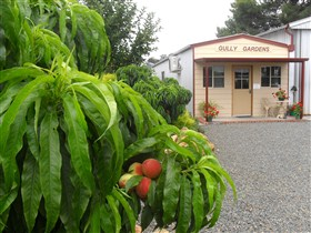 Gully Gardens - Accommodation Yamba