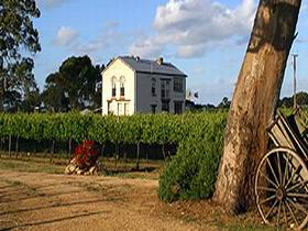 Highbank Vineyards - Accommodation Yamba
