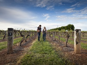 Coonawarra Wineries Walking Trail - Accommodation Yamba