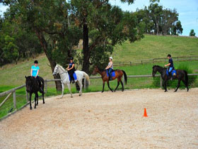 Megan Jones Riding School and Trail Rides - Accommodation Yamba