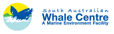 South Australian Whale Centre - Accommodation Yamba