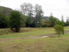 Brooyar State Forest - Accommodation Yamba