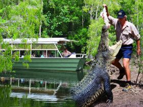 Hartleys Crocodile Adventures - Accommodation Yamba