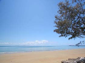 Blacks Beach - Accommodation Yamba