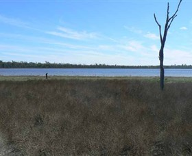 Lake Murphy Conservation Park - Accommodation Yamba