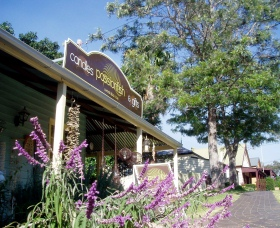 Passionfish Candles - Accommodation Yamba