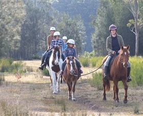 Horse Riding at Oaks Ranch and Country Club - Accommodation Yamba