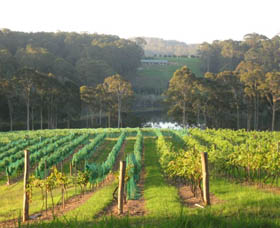 Tilba Valley Wines - Accommodation Yamba