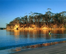 Batemans Marine Park - Accommodation Yamba