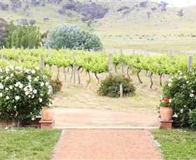 Brindabella Hills Winery - Accommodation Yamba