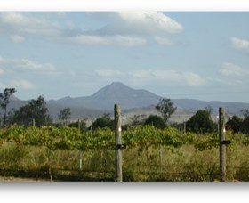 Ironbark Ridge Vineyard - Accommodation Yamba