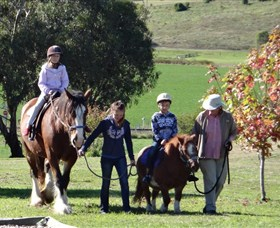Bathurst Farm Experience - Accommodation Yamba