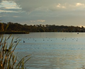 Lake Inverell Reserve - Accommodation Yamba