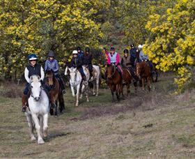 Burnelee Excursions on Horseback - Accommodation Yamba