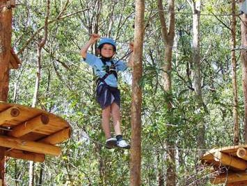 TreeTops Newcastle - Accommodation Yamba