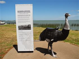 Birdman of the Coorong - Accommodation Yamba