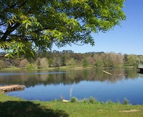Lake Canobolas Reserve - Accommodation Yamba