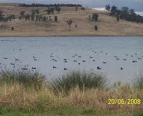 Lake Liddell Recreation Area - Accommodation Yamba