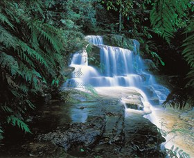 Leura Cascades - Accommodation Yamba