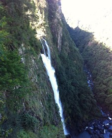 Ellenborough Falls - Accommodation Yamba