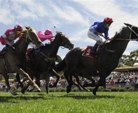 Moruya Racecourse - Accommodation Yamba