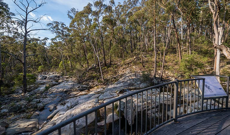 Myanba Gorge walking track - Accommodation Yamba