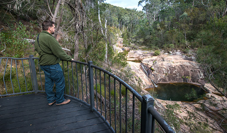 Biamanga National Park - Accommodation Yamba