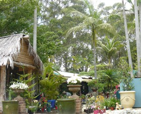 Diamond Waters Garden Nursery - Accommodation Yamba