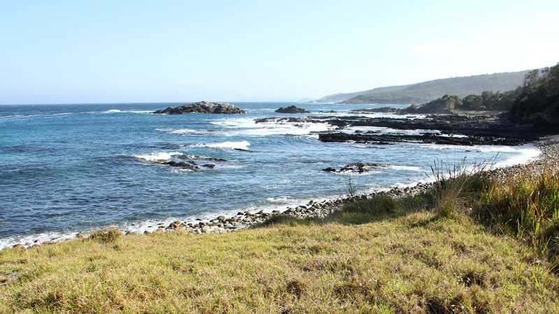 Mimosa Rocks National Park - Accommodation Yamba