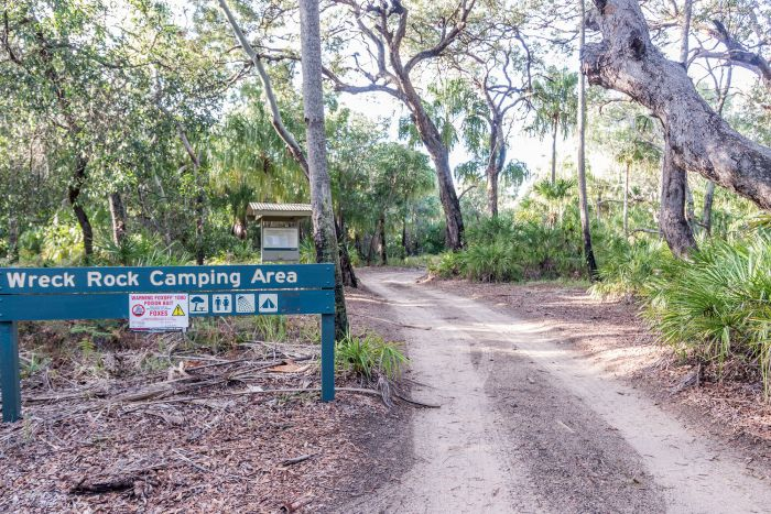 Deepwater National Park Camping Ground - Accommodation Yamba