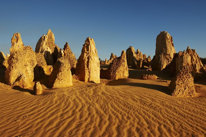 Pinnacles Day Trip from Perth Including Yanchep National Park - Accommodation Yamba