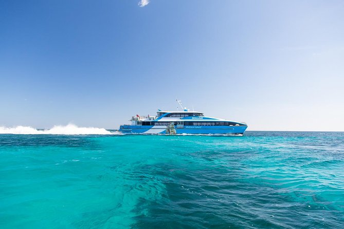 Fremantle to Rottnest Island Roundtrip Ferry Ticket - Accommodation Yamba
