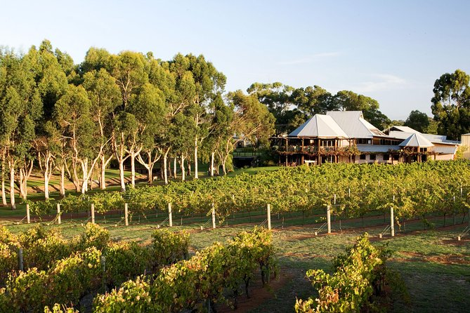 Margaret River and Geographe Bay Region Day Trip from Perth - Accommodation Yamba