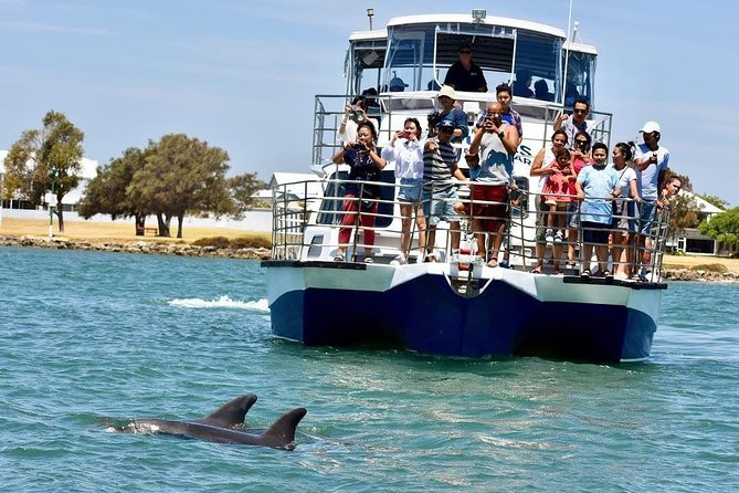 Mandurah Dolphin and Scenic Canal Cruise - Accommodation Yamba