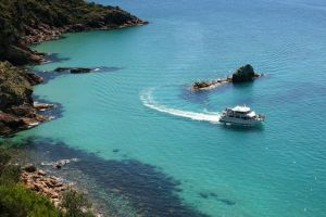 Cape Woolamai Sightseeing Cruise from San Remo - Accommodation Yamba