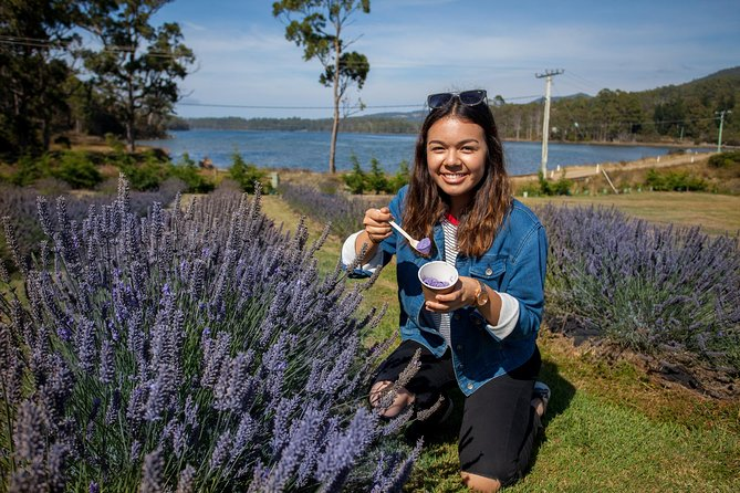 Port Arthur and Lavender Farm Active Day Tour - Accommodation Yamba