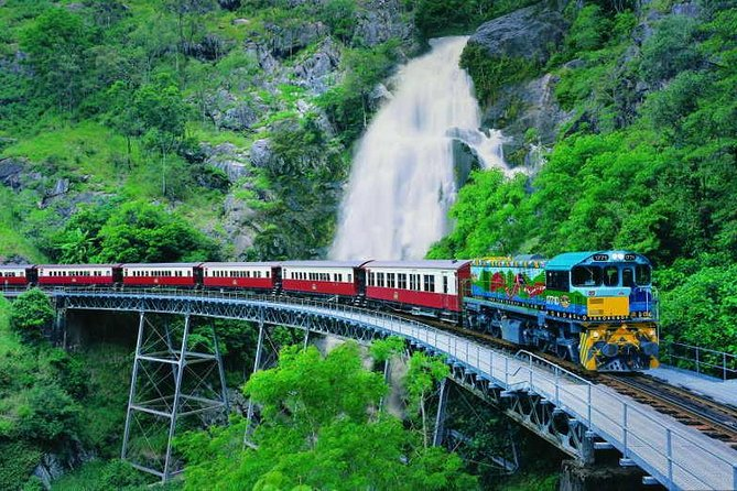 Full-Day Tour with Kuranda Scenic Railway Skyrail Rainforest Cableway and Hartley's Crocodile Adventures from Cairns - Accommodation Yamba