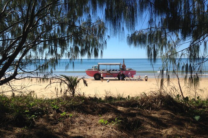 1770 Coastline Tour by LARC Amphibious Vehicle Including Picnic Lunch - Accommodation Yamba