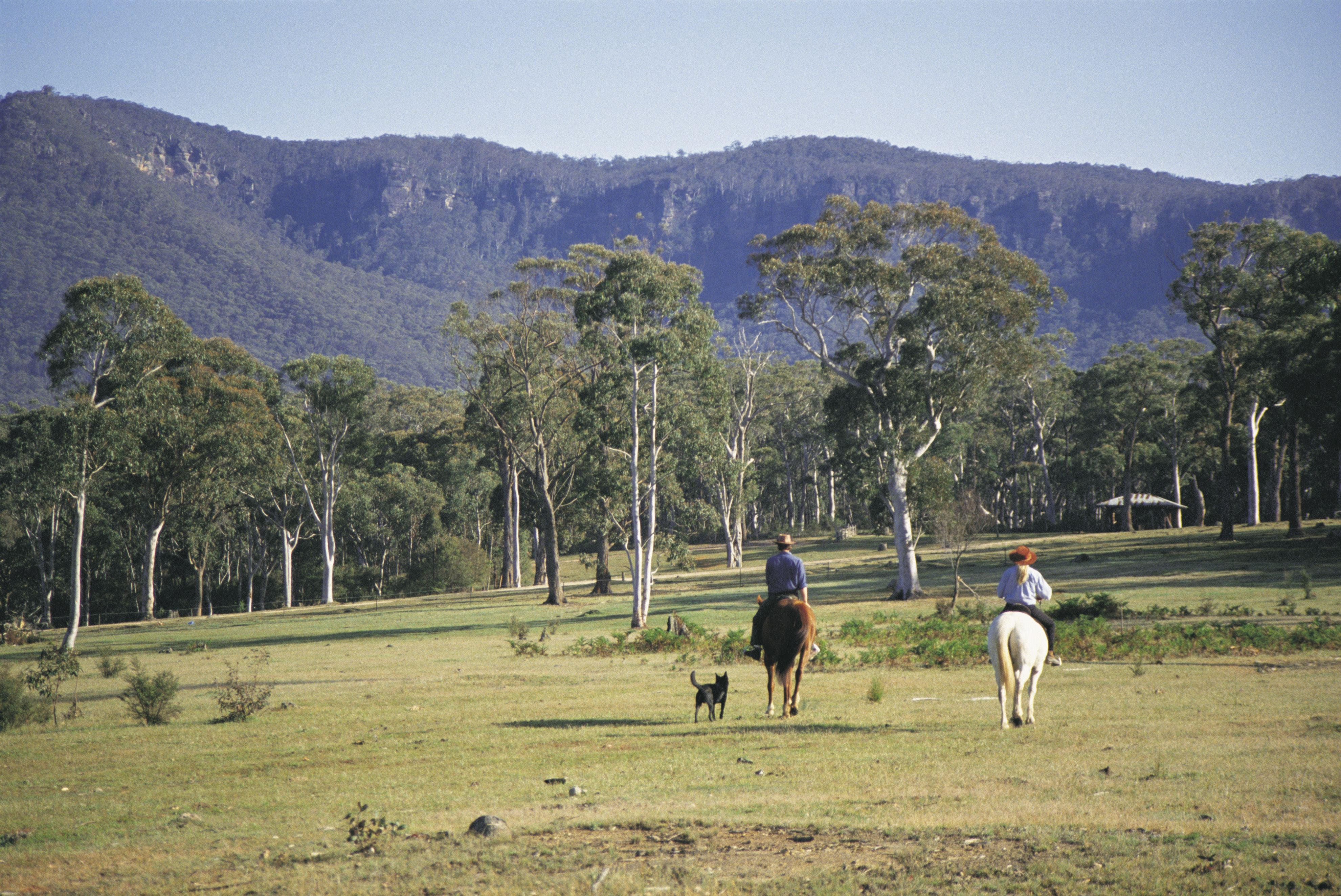 Megalong Valley - Accommodation Yamba