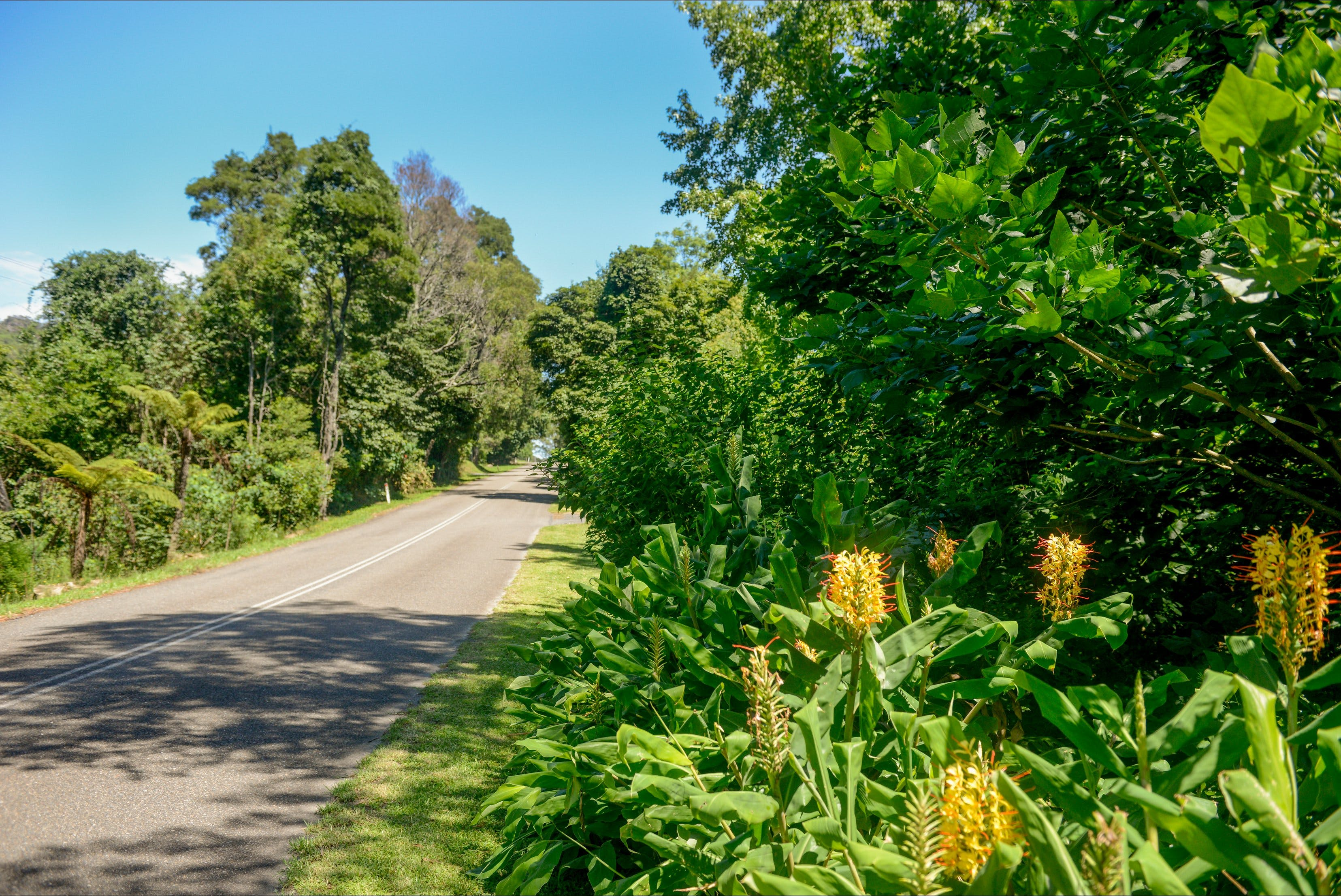 Broughton Vale - Accommodation Yamba