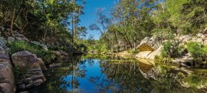 Crows Nest National Park - Accommodation Yamba