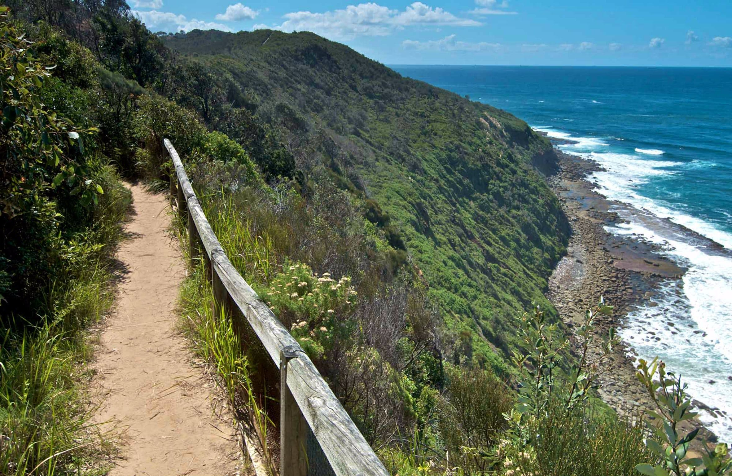 The Coast Walking Track - Accommodation Yamba