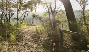 Bundanoon Creek walking track - Accommodation Yamba