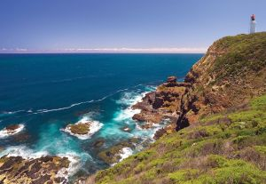 Bushrangers Bay Walking Track - Accommodation Yamba