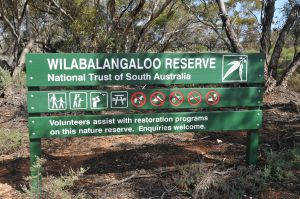 Wilabalangaloo Reserve - Accommodation Yamba