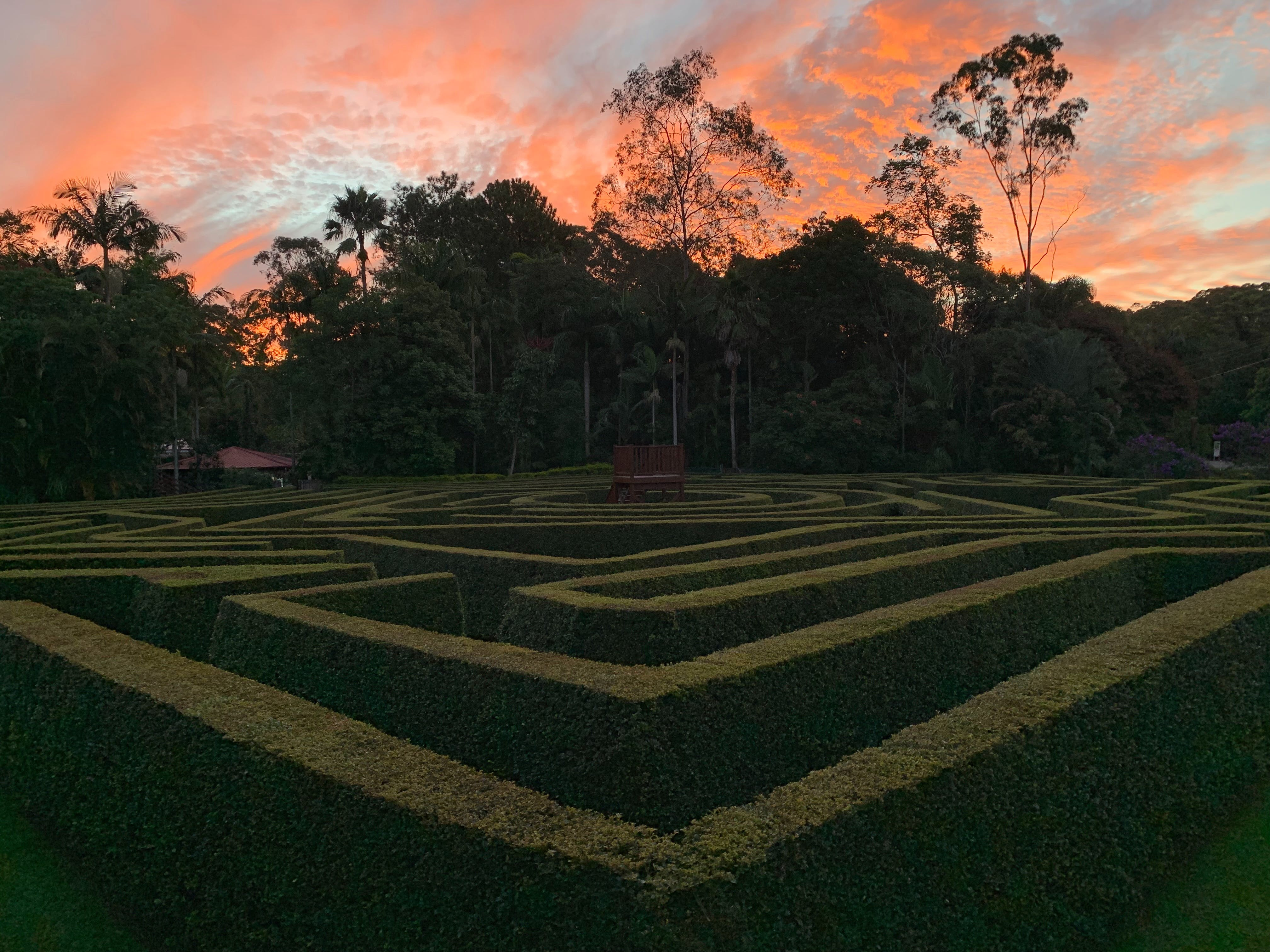 Bellingham Maze - Accommodation Yamba