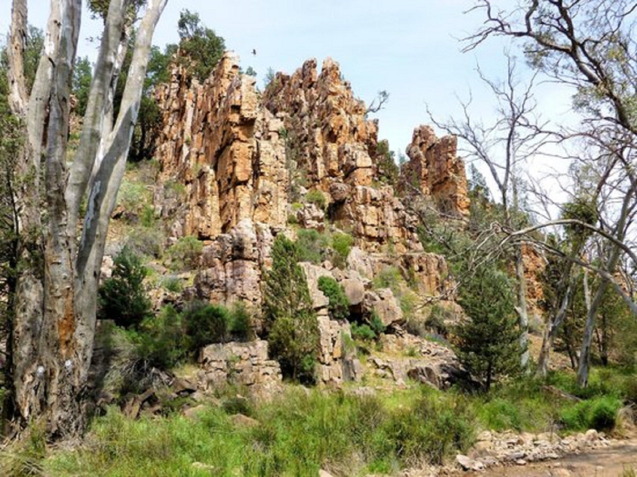 Warren Gorge - Accommodation Yamba