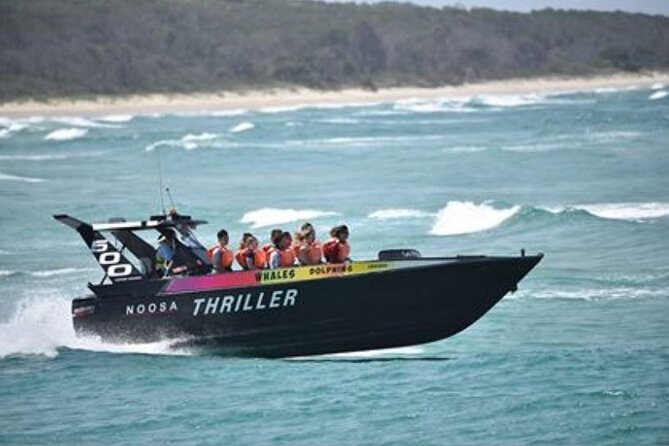 Noosa Thriller - 500hp Ocean Adventure Ride - Accommodation Yamba